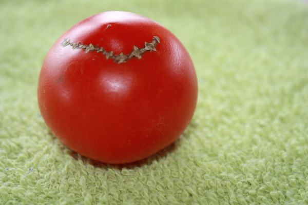 So that's why I'm not eating a ton of tomatoes yet…and a weekend to-do list