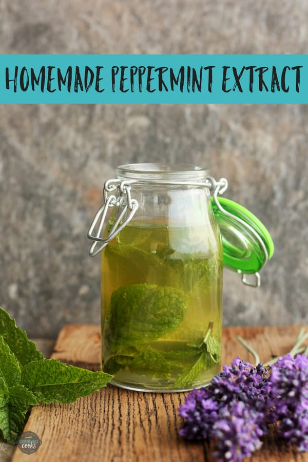 Learn how easy and affordable it is to make your own Homemade Peppermint Extract! Homemade mint extract makes wonderful Christmas and holiday gifts. #sustainablecooks #peppermintextract #baking #homemadeextracts #christmasgifts #holidaygifts #homemadegifts