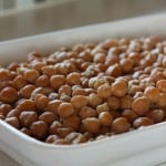 Roasted chickpeas – aka crack beans!