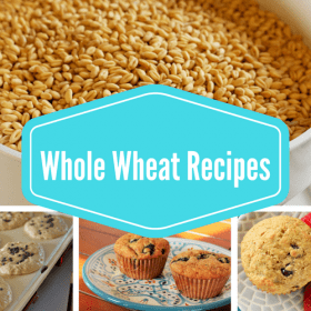 Whole Wheat Recipes