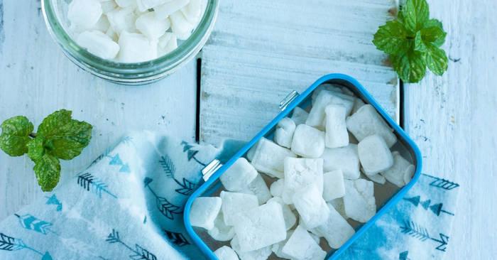 Homemade Mints {Altoids Mints Copycat}   Sustainable Cooks