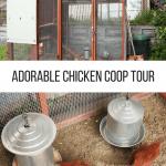 Adorable Chicken Coop