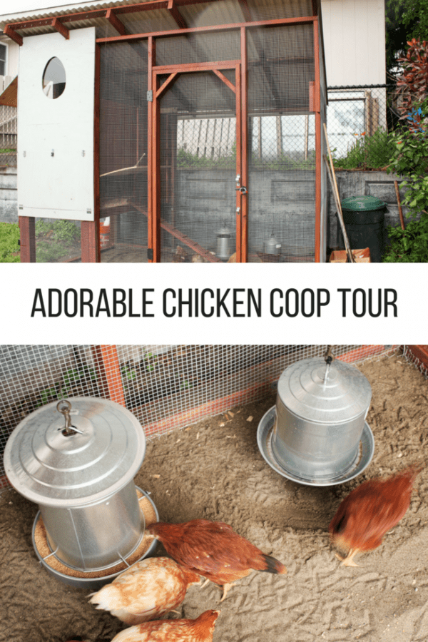Adorable Chicken Coop