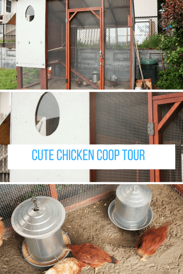 Chicken coop tour of an adorable homemade coop full of charm and built with salvaged materials. This cute chicken coop has so much personality.