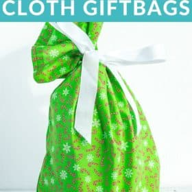 a green cloth giftbag
