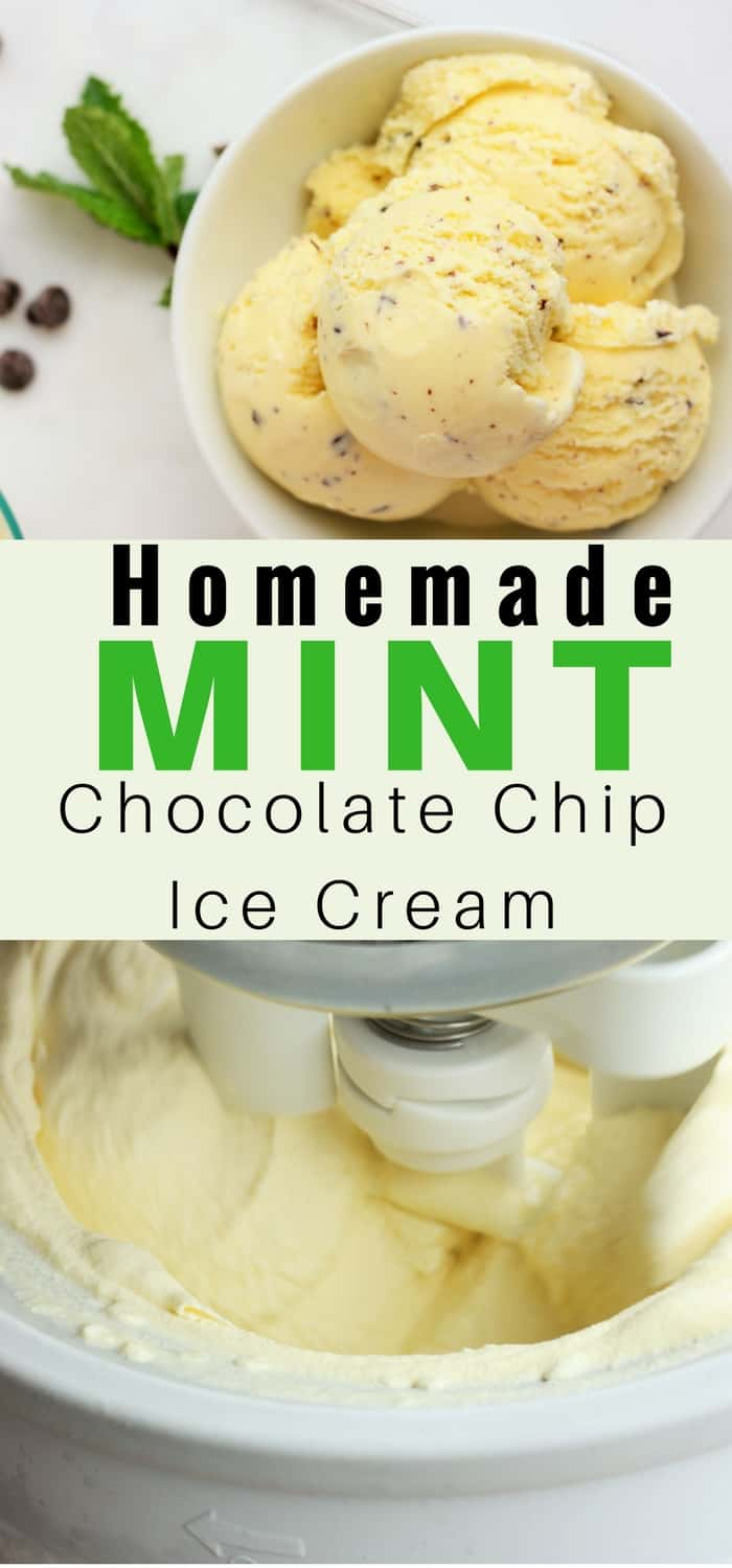 Ditch the industrial green store-bought ice cream and learn to make your own Homemade Creamy Mint Chocolate Chip Ice Cream. A fresh mint taste and all-natural ingredients mean this mint chip will be the best ice cream you'll ever make. #ice cream #mintchip #homemadeicecream #mintchocolatechip #sustainablecooks