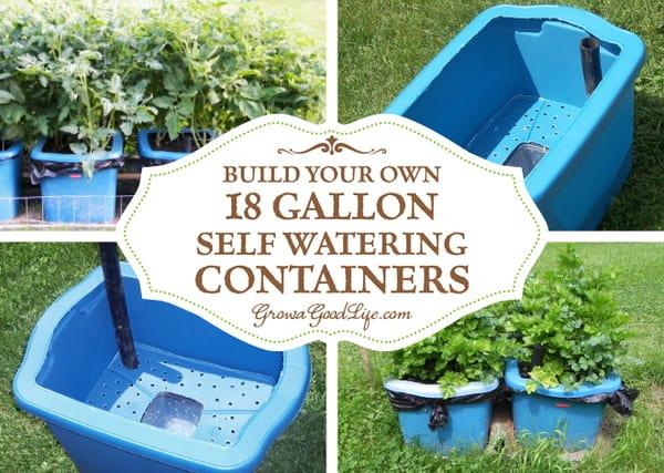 build-self-watering-container-growagoodlife