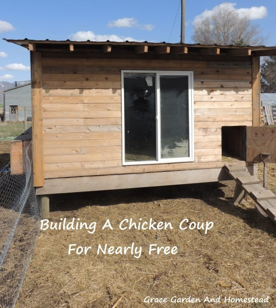 Chicken-Coup-550x614