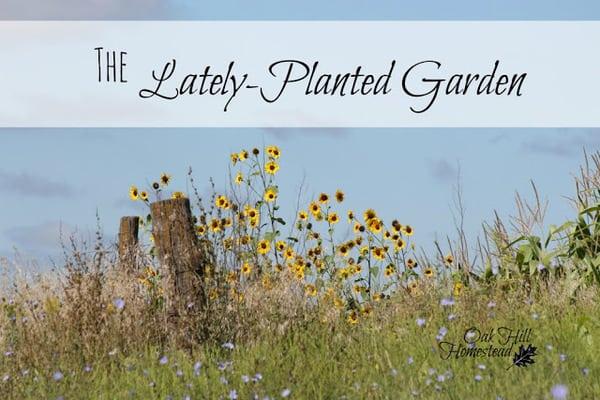 gardentitle
