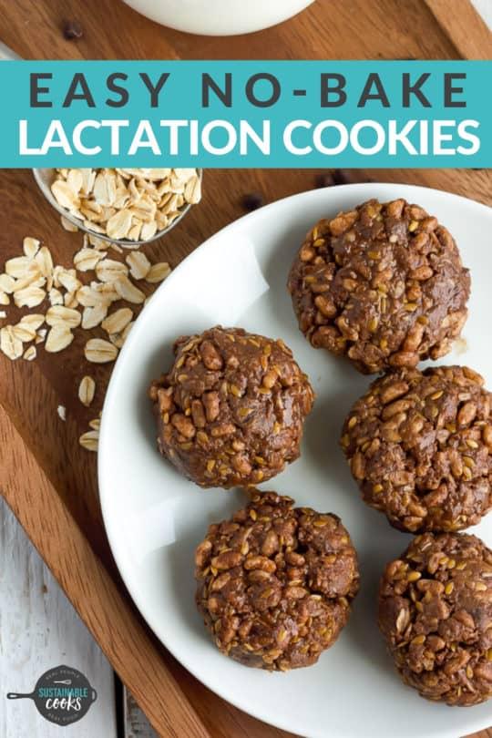 No Bake Lactation Cookies