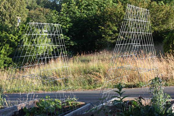 DIY garden trellises