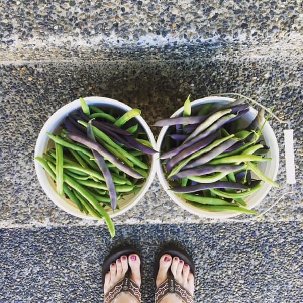 green beans in buckets on steps