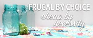 BlogHeadSizedFrugal