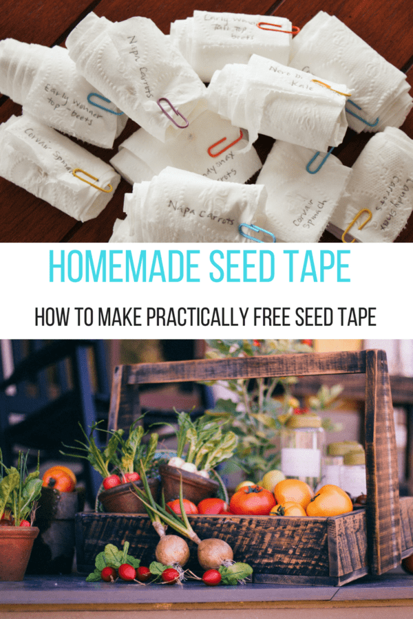 Seed tape is the best and most efficient way to get a perfectly spaced garden this year. No more planting tiny seeds and then thinning them later!