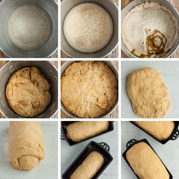 9 photos showing step by step how to make whole wheat bread