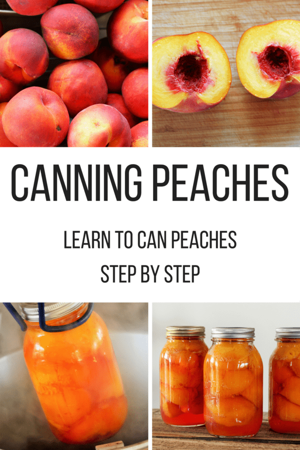 How to can peaches! Learn all about canning peaches. This photo tutorial on canning peaches will show you the process step by step.