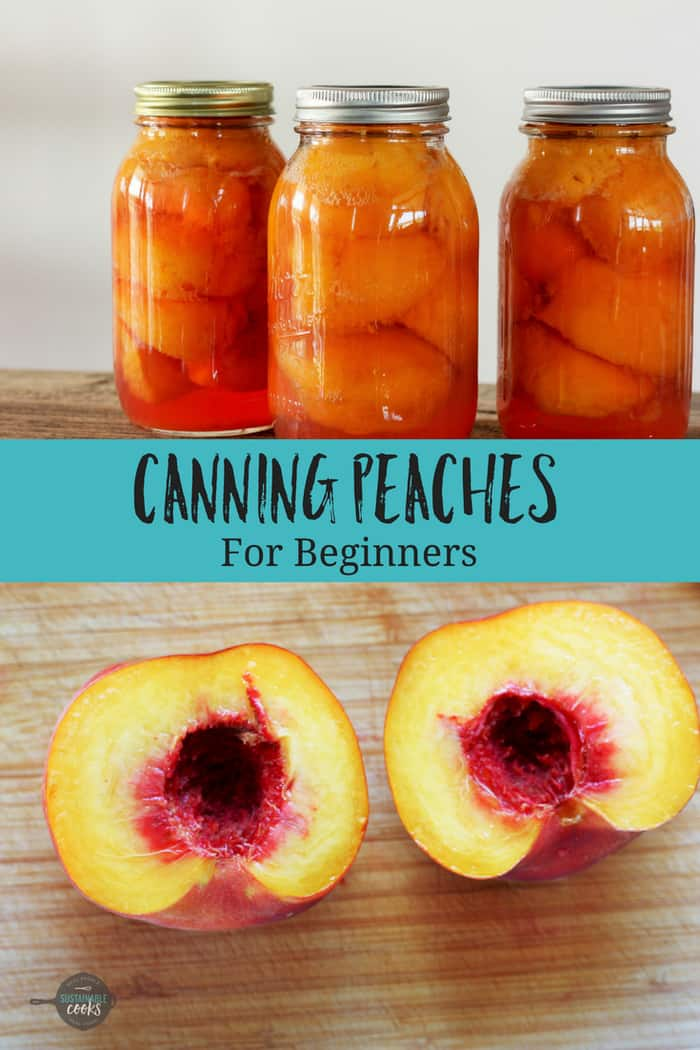 An easy step by step tutorial on Canning Peaches at home. This recipe is perfect for beginners and experienced canners alike. Home-canned goods are healthier and more delicious than storebought. #sustainablecooks #canning #canningpeaches #peaches #easycanning