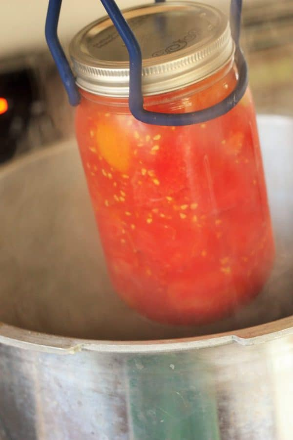 canning tongs lowering a jar of whole tomatoes into a canner