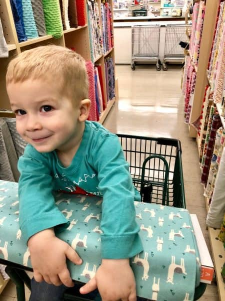 kid in cart at Joanns