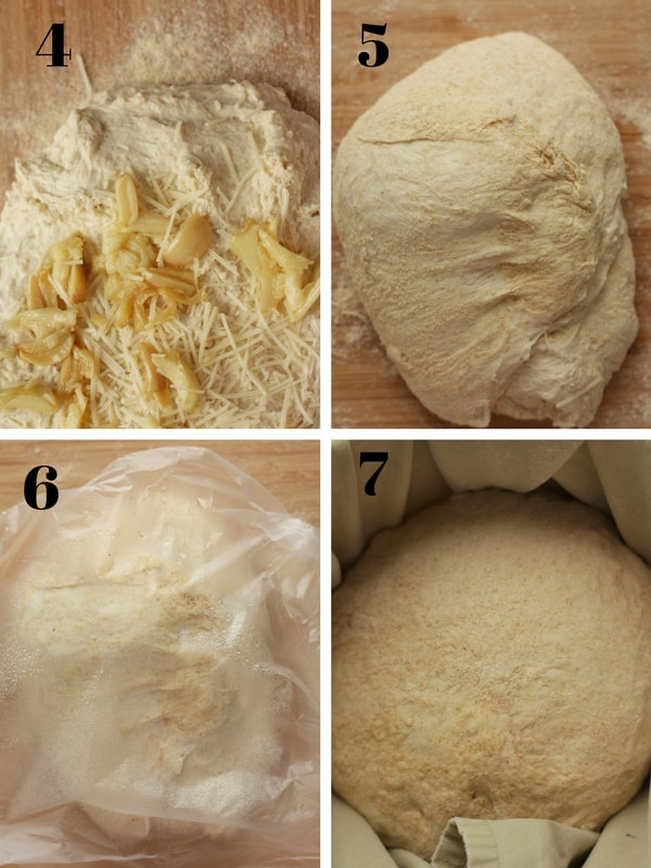 four steps of the baking process for roasted garlic and asiago cheese no knead bread