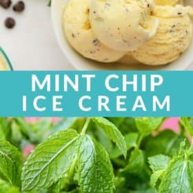 a bowl of mint chip ice cream with chocolate chips on a white surface
