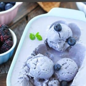 a bowl of blueberry ice cream