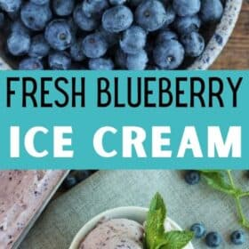 a bowl of homemade blueberry ice cream
