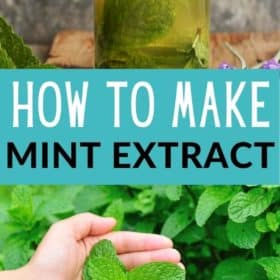 a bottle of homemade mint extract