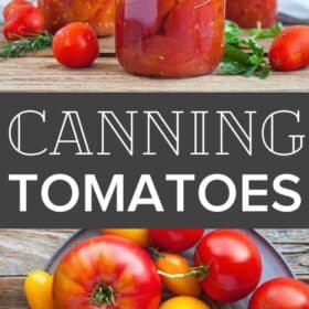 jars of canned whole tomatoes