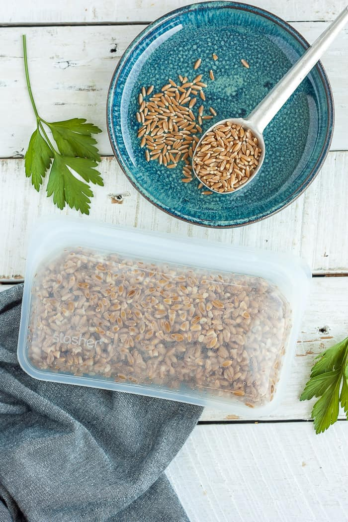 farro in a reusable Stasher bag
