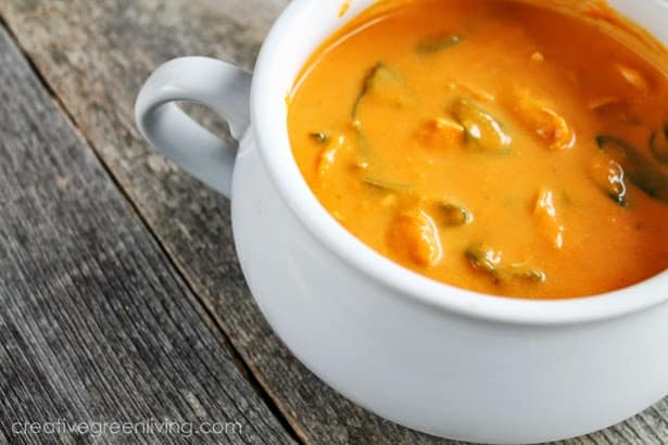 Chicken, Carrot & Coconut Curry Soup