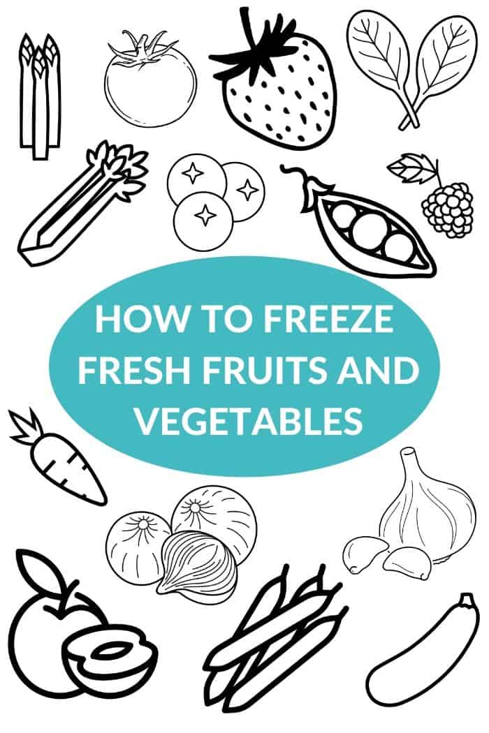 A white background with illustration images of fruits and vegetables