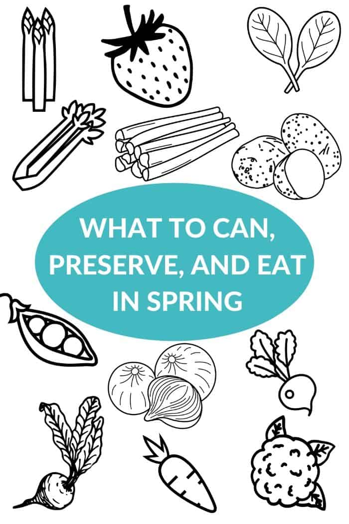 Illustrations of springtime produce