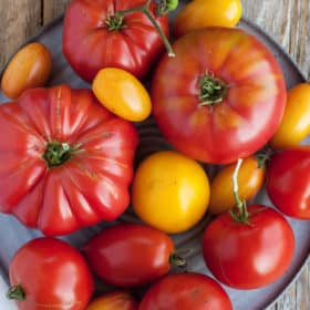 Multiple kinds of tomatoes on a grey plate on a wooden board