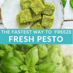 cubes of frozen pesto on a grey plate with fresh basil on a white board