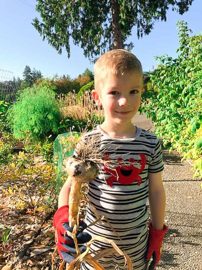 a boy holding a head of garlic