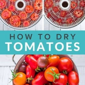 photos showing the process on how to dehydrate tomatoes
