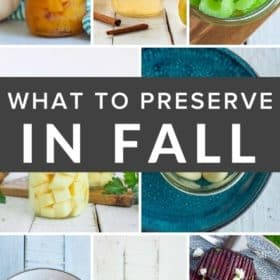multiple photos of fall produce and dishes