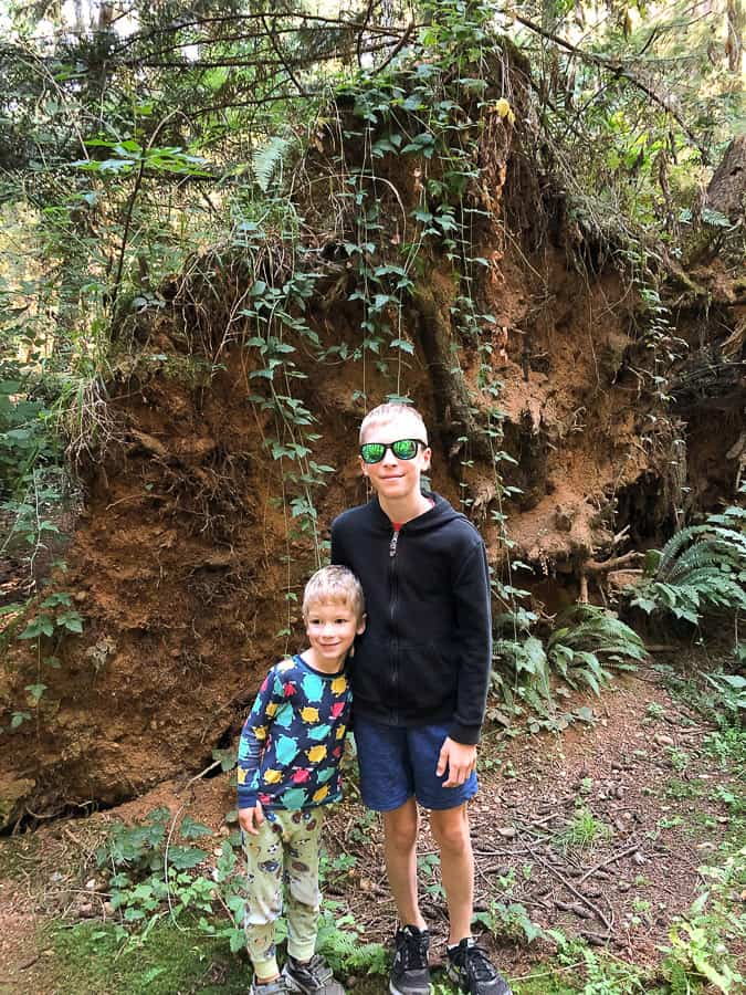 2 boys in front of a tree's root ball