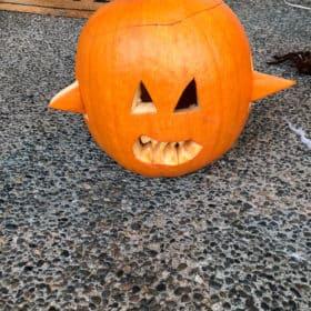 a shark pumpkin