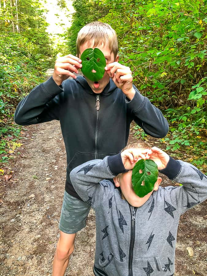 2 boys in sweatshirts with leaves over the faces