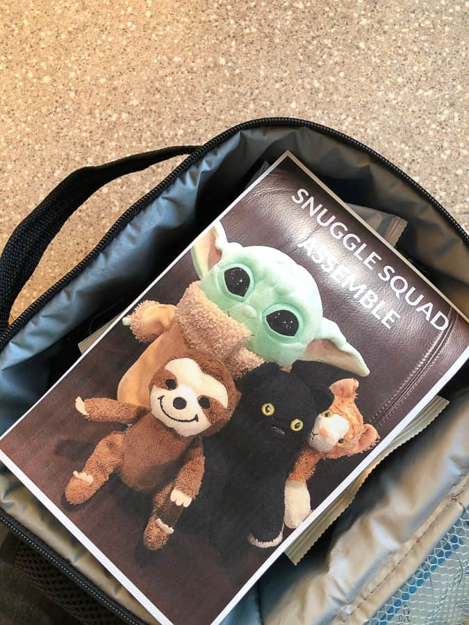 a picture of stuffed animals in a kid's lunchbag