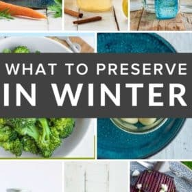 photos of winter produce dishes