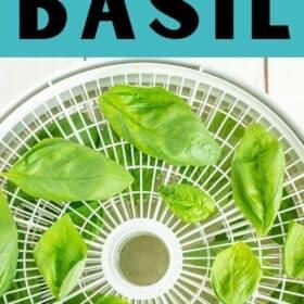 a dehydrator tray drying basil