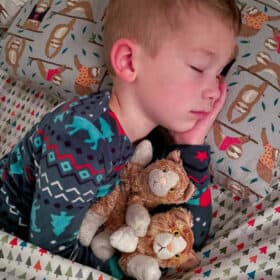 a boy holding two stuffed cats while sleeping