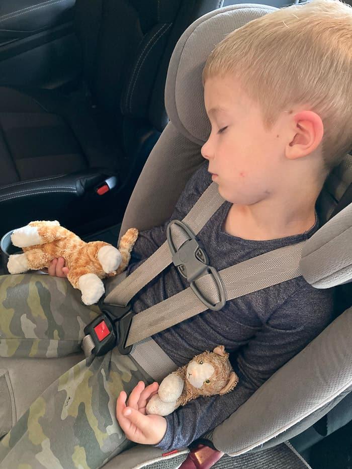 a boy asleep in a car seat holding 2 stuffed cats