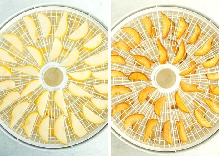 sliced pears on a dehydrator tray