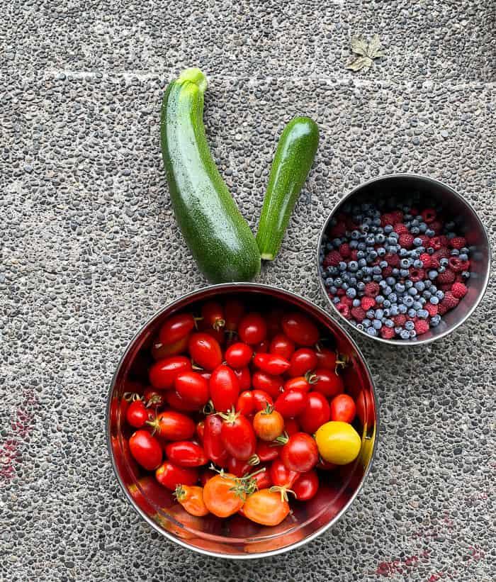 tomatoes, zucchini, and raspberries on the ground