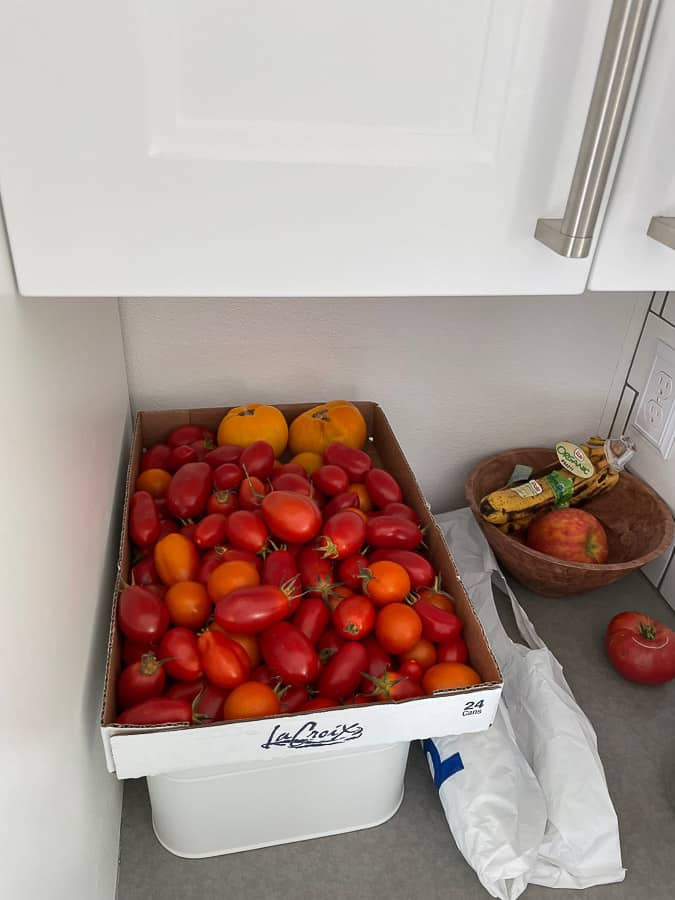 a box of tomatoes on a countertop