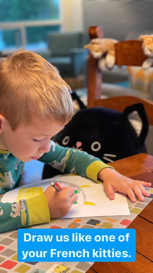 a boy drawing a photo of a stuffed cat